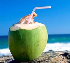 Health Benefits of Coconut Water and Coconut Water Nutrition. Why is Coconut Water called Natural Electrolyte? Get Complete Information About Coconut Water Health Benefits. Coconut Cream, Coconut Milk, Smoothie Recipes, Smoothies, Drink Recipes, Coconut Water Benefits, Coconut Drinks, Coconut Recipes, Vegan Recipes