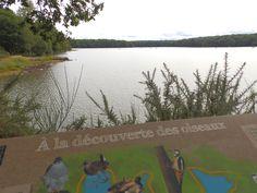 """Nous vous proposons un livret """"sentier d'interprétation"""" pour observer la faune et la flore tout le long du sentier autour de l'étang de Trémelin."""