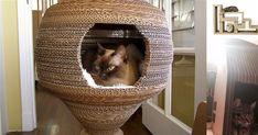 12 Cardboard DIY Cat Solutions