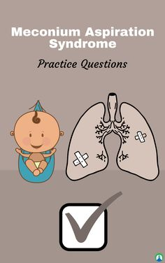 Meconium Aspiration Syndrome: Study Guide and Practice Questions — These practice questions can help you ace your exams in Respiratory Therapy School. Pediatric Nursing, Nicu Nursing, Nursing School Tips, Nursing Schools, Pharmacology Nursing, Respiratory Therapy, Nursing Students, Medical Students, This Or That Questions