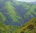 """""""The Heart of Tejon"""" 36"""" x 40"""", Oil on Linen #MuenchArt #ArtinPasadena #CaliforniaArt"""
