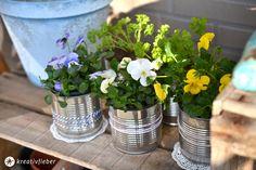 15 Minuten DIY Quickie: Blumentöpfe aus Konservendosen machen für ein hübsches Balkonien oder den Kräutervorrat für die Küchenzeile.