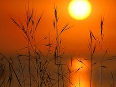 Google Image Result for http://images1.fanpop.com/images/image_uploads/Sunset33-sunsets-and-sunrises-916689_1024_768.jpg