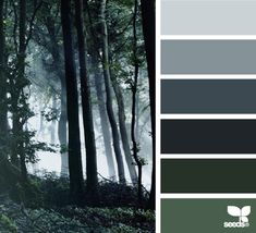 forrest tones | design seeds | Bloglovin