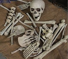 Bag of Plastic Skeleton Bones Indoor/Outdoor Halloween Decoration,30 Piece Set -- Awesome products selected by Anna Churchill