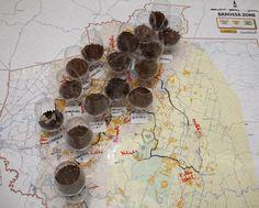 Barossa Grounds: Soil from various vineyard sites in Barossa - taken on a Barossa Grounds tour. Image by Dragan Radocaj Photography. Types Of Soil, South Australia, Wines, Vineyard, Map, Photography, Flooring, Vine Yard, Fotografie