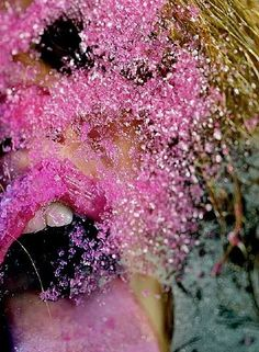 Marilyn Minter - Pink Snow - Artwork details at artnet