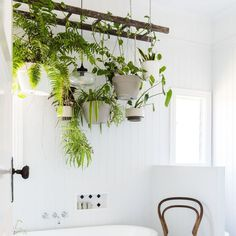 Suspended plant: hanging plant and macrame suspension # hanging . - interior design ideas , Suspended plant: hanging plant and macrame suspension Rustic Pot Racks, Nature Living, Suspension Hanging, Apartment Plants, Decoration Plante, Ceiling Decor, Hanging Plants, Diy Hanging, Home Look