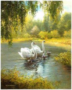 Raindrops and Roses Beautiful Swan, Beautiful Birds, Beautiful Family, Raindrops And Roses, Nature Pictures, Bird Art, Beautiful Creatures, Pet Birds, Landscape Paintings