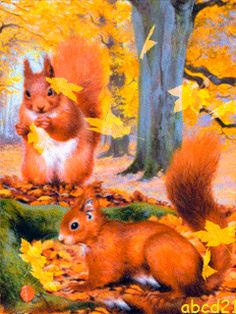 Squirrels and Falling Leaves Fall Pictures, Christmas Pictures, Pretty Pictures, Animal Pictures, Gifs, Winter Gif, Illustrations, Illustration Art, Make A Cartoon