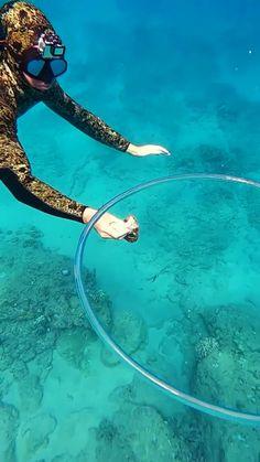 Cutest Animals On Earth, Cute Wild Animals, Animals Of The World, Cute Funny Animals, Underwater Creatures, Ocean Creatures, Funny Animal Jokes, Funny Animal Videos, Beautiful Sea Creatures