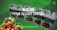 WA_0823*2292*4990. Jual pupuk SNN, Agen pupuk organik cair Jogja, Distributor pupuk cair SNN, pupuk organik SNN, promo pupuk daun SNN, pupuk cair SNN, murah pupuk SNN, Harga SNN pupuk organik, Jual pupuk organik cair, produsen pupuk organik cair SNN