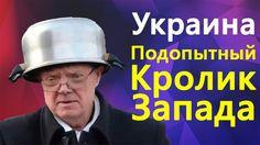 Сколько Ж0пy Не Целуй, а Кредиты Отдавать Надо - Владимир Скачко