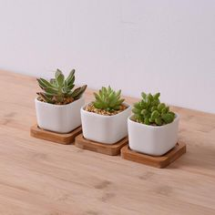 Garden Supplies White Creamic Flower Pot With Bamboo Tray Indoor Mini Rectangular Planter Glazed Pottery Succulent Pots Novelty-in Flower Pots