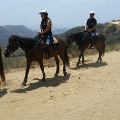 Sunset Ranch Hollywood Stables,  3400 N Beachwood Dr Los Angeles, CA 90068 Hollywood Hills