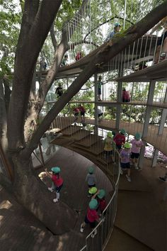 The playground that's around a tree . . . in the middle of a school.