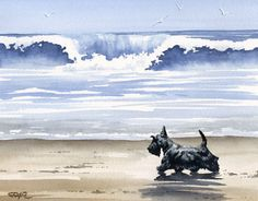 Scottish Terrier at the Beach 8 x 10 Dog Art Print Signed by Artist DJR
