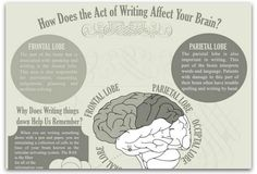 Infographic: How writing affects your brain | Articles | Main