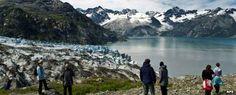 Glacier Bay National Park: Photos, video, information and maps of the Glacier Bay National Park and Preserve area in the panhandle of Alaska Glacier Bay National Park, National Parks, Back In Time, Preserve, Wilderness, Alaska, Cruise, Boat, America