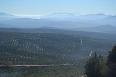 Vista desde el Mirador de los cerros de Úbeda