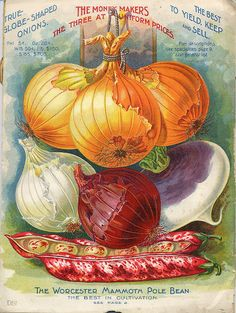 It's About Time: At the Farmers' Market - Historic American Seed and Plant Catalogs from Smithsonian Institution Libraries