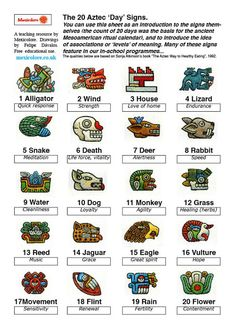Mexicolore's (revised) Aztec Calendar Daysigns info sheet Mayan Tattoos, Mexican Art Tattoos, Indian Tattoos, Inka Tattoo, Tattoo Art, Aztec Symbols, Viking Symbols, Egyptian Symbols, Ancient History