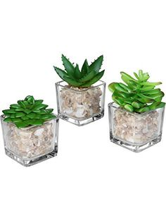 Small Glass Cube Artificial Plant Modern Home Decor / Faux Succulent Planter Pots, Set of 3 - MyGift® ❤ MyGift