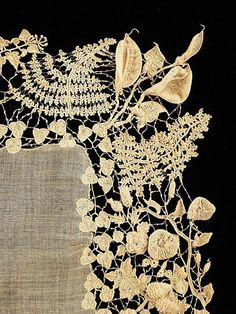 Beautifuly detailed embroidery or lace. Amazing color contrast.