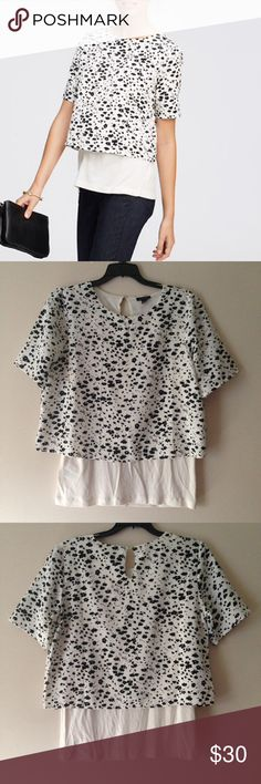 """Ann Taylor Floral Print Tiered Blouse Tee Top NWT Ann Taylor Floral Print Tiered Blouse Tee Top. Floral Silhouette Tiered Tee. Length 27"""", Waist 16"""" (Very Stretchy). Crew Neckline. Retail $60.00 #1127160214 ✨Please keep in mind that measurements are provided only as a guide and are approximate. Color appearance may vary depending on your monitor settings. Ann Taylor Tops Blouses"""