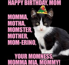 The simple act of sending funny happy birthday mom memes can bring a smile to a mother's face. Here are 101 happy birthday memes to help you get started. Happy Birthday Mom Meme, Cat Birthday, Birthday Wishes, Birthday Memes, Birthday Ideas, Birthday Humorous, Birthday Sayings, Sister Birthday, Birthday Greetings