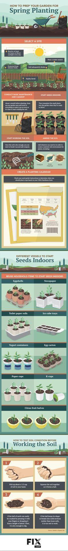 How to Start a Food Garden