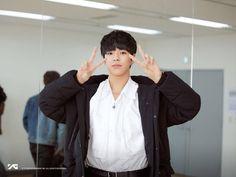 Yoshi, Cute Panda, Treasure Boxes, Photo Cards, Lion, Handsome, Husband, Entertainment, Youtube