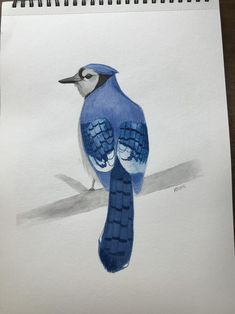 Blue jay original watercolor painting home decor wall art Watercolor Paintings For Sale, Blue Jay, Home Decor Wall Art, Bird Art, Birds, The Originals, Animals, Etsy, Vintage