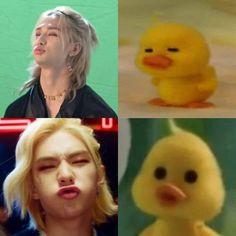 Stray Kids Seungmin, Felix Stray Kids, Funny Kpop Memes, Kid Memes, Kpop Gifs, All Meme, Kim Jisoo, Crazy Kids, Lee Know