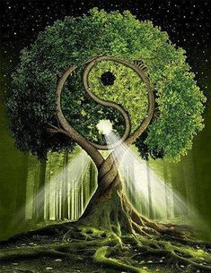 Yin Yang Tree Of Life Diamond Painting Kit makes stunning diamond art for home decoration! This DIY diamond painting kit has everything you need to create a Image Zen, Ouvrages D'art, 5d Diamond Painting, Tree Art, Sacred Geometry, Mother Earth, Psychedelic, Fantasy Art, Cool Art