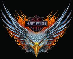 harley-davidson shield tattoo for woman… Harley Davidson Logo, Harley Davidson Sportster, Harley Davidson Kunst, Harley Davidson Tattoos, Harley Davidson Pictures, Harley Davidson Wallpaper, Motor Harley Davidson Cycles, Classic Harley Davidson, Tatoo 3d