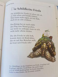 Die Schildkröte Frieda #fingerspiel #krippe #kita #kindergarten  #kind #reim #gedicht #erzieherin #erzieher