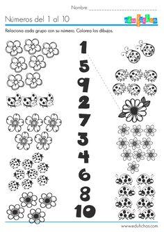 Atividade de categorização e matemática.