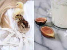 figs and chicks!
