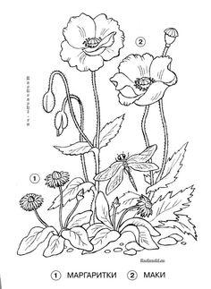 (141) Gallery.ru / Фото #177 - МК и СХЕМЫ 2 - mishamasha Flower Line Drawings, Flower Drawing Tutorials, Flower Sketches, Art Drawings, Autumn Painting, Fabric Painting, Painting & Drawing, Creative Embroidery, Embroidery Art