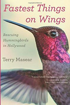Fastest Things On Wings: Rescuing Hummingbirds in Hollywood by Terry Masear available at the Huntington Store.   http://www.thehuntingtonstore.org/collections/books/products/fastest-things-on-wings