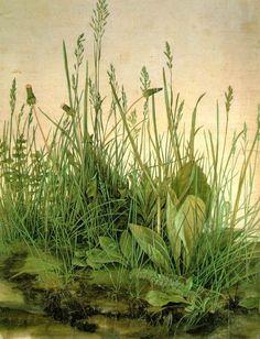 Albrect Durer- Great Piece of Turf