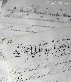 Gorgeous Antique French diary pages