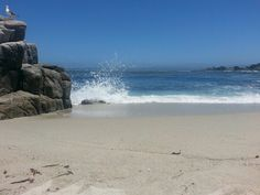 Lover's Point Beach, Pacific Grove CA. Potential site...