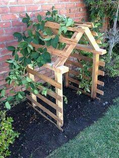 Garden idea for cukes, beans etc