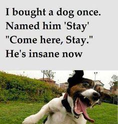 He's Insane Now!