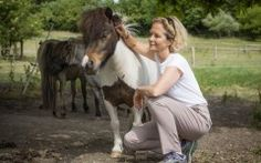 The actress Jenny Seagrove tells Victoria Lambert about her latest role at a horse sanctuary where rescue is just part of the story Jenny Seagrove, Horse And Human, Alternative Medicine, Horse Racing, Healer, I Love Cats, Journey, Kawaii, Horses