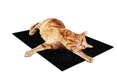 kennelmat.com - Kennel Home Mat Your Pet, Pets, Animals, Animales, Animaux, Animal Memes, Animal, Animais, Dieren