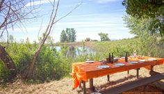 Beautiful #sunny day to taste typical dishes of #Maremma in the countryside , surrounded by nature and the #lake of VALDONICA.