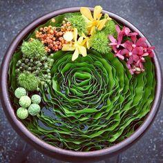 Instagram photo by @pranaflower | Iconosquare Art Floral, Floral Artwork, Floral Design, Contemporary Flower Arrangements, Flower Festival, Ikebana, Floral Bouquets, Amazing Flowers, Flower Decorations
